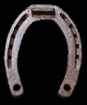 horseshoe-2662773_640